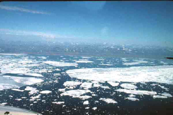 The Bering Sea ice just breaking up in late May with Nome in the background