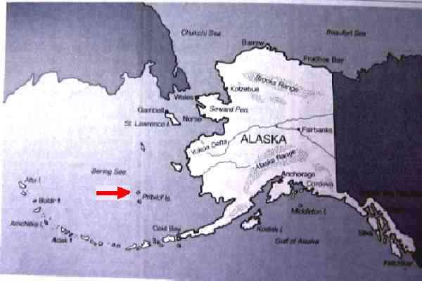 Hanging around at Saint Paul Alaska. |Saint Paul Alaska